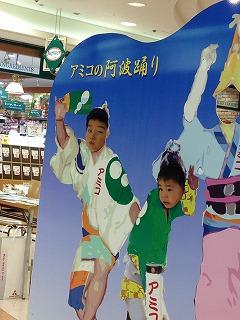 awaodori_kakie.jpg