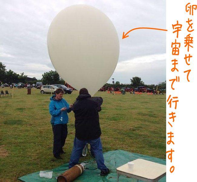 ballon_egg2.jpg.jpg