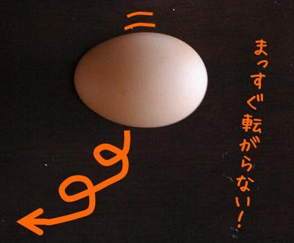 egg_roll_katati2.jpg
