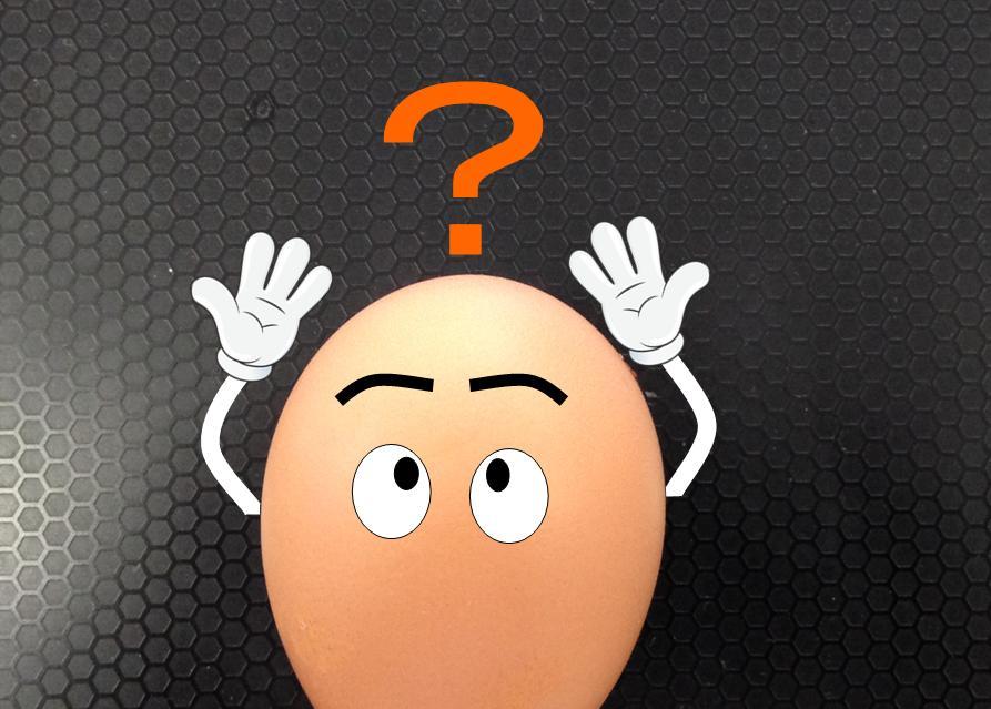 hg_egg.jpg