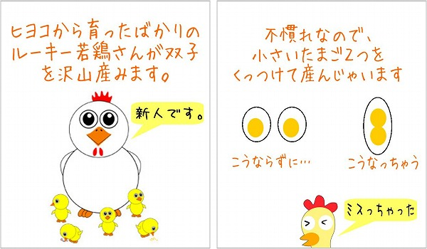 hutago_shikumi.jpg