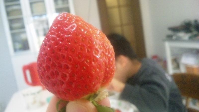 ichigo201403.jpg
