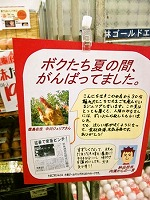 pop_natsu_pic.jpg