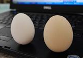 standing_egg3.png