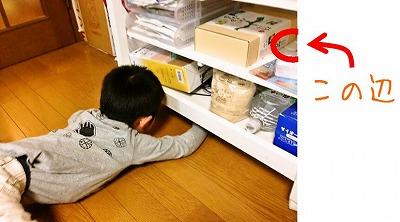 tamago_sagashi.jpg