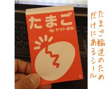 tamagoshi_ru.jpg