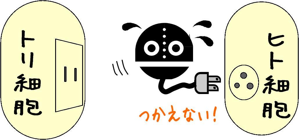 toriinhuru_robo.jpg